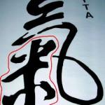 YYTA Qi Symbol